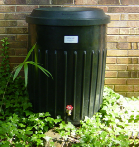 Cover photo for Rain Barrel Availability