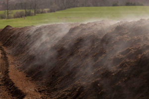 Cover photo for Quick Compost Survey for Farmers