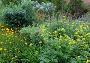 Cover photo for Register Now for Spring Pollinator Workshops & Garden Tours