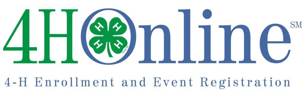 4HOnline logo image