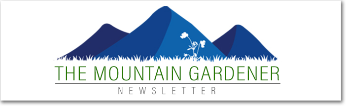 The Mountain Gardener Newsletter Header
