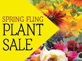 Spring Fling Plant Sale