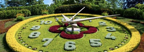 Garden clock made from plants and flowers