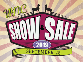 Show & Sale Banner
