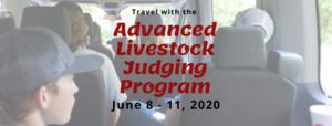 Cover photo for Advanced Livestock Judging Registration