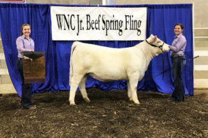 Cover photo for Western NC Spring Fling (CANCELED)