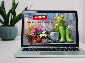 laptop with garden blog on screen