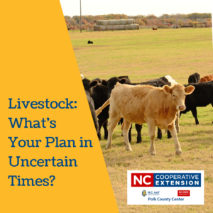 Livestock plan for COVID-19