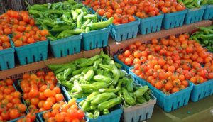 Cover photo for Curious About Buncombe County Farmer's Markets?