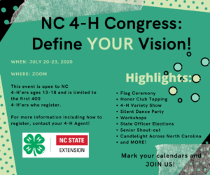 Cover photo for 2020 Virtual NC 4-H Congress