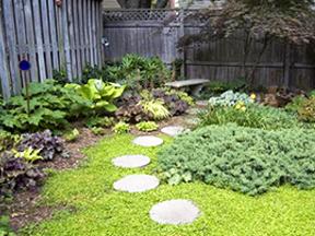 walking path in garden
