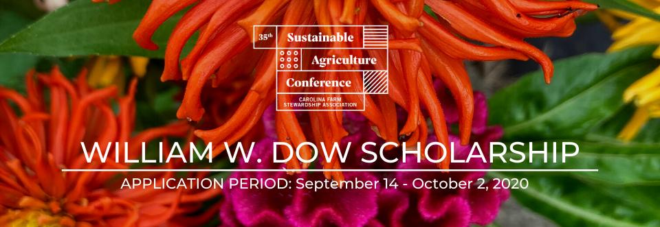 William W Dow Scholarship