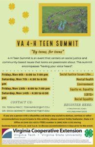 Virtual Teen Summit Flyer info
