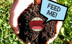 """Hands holding soil with a mouth saying """"feed me!"""""""