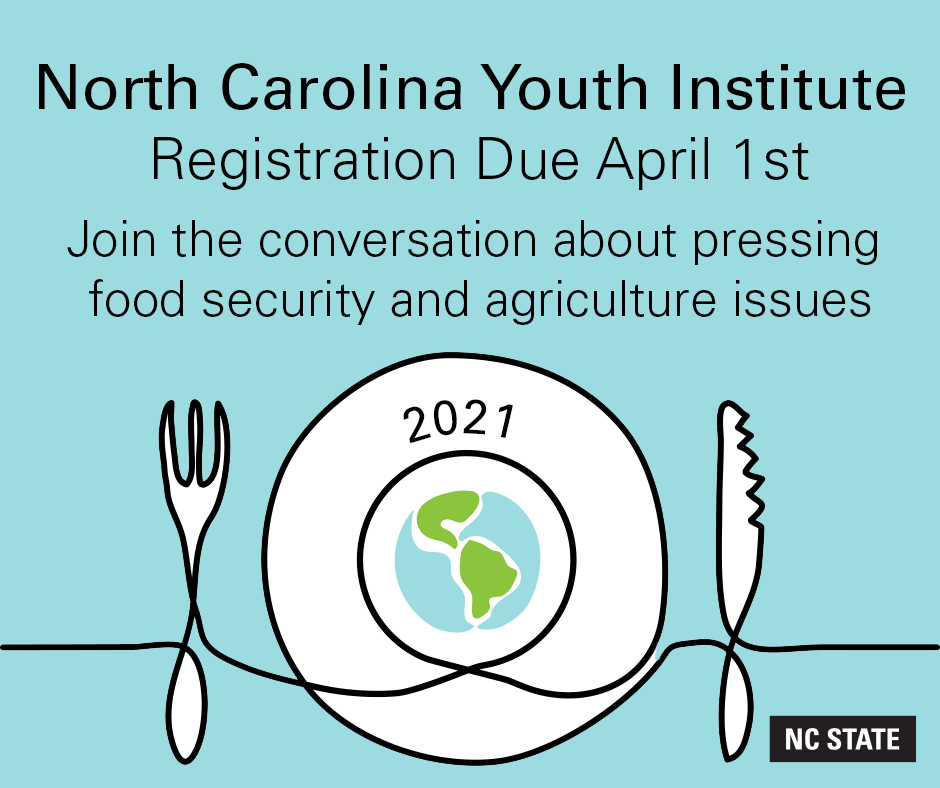 NC Youth Institute