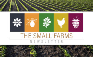 Small Farms Newsletter Header on background of crops