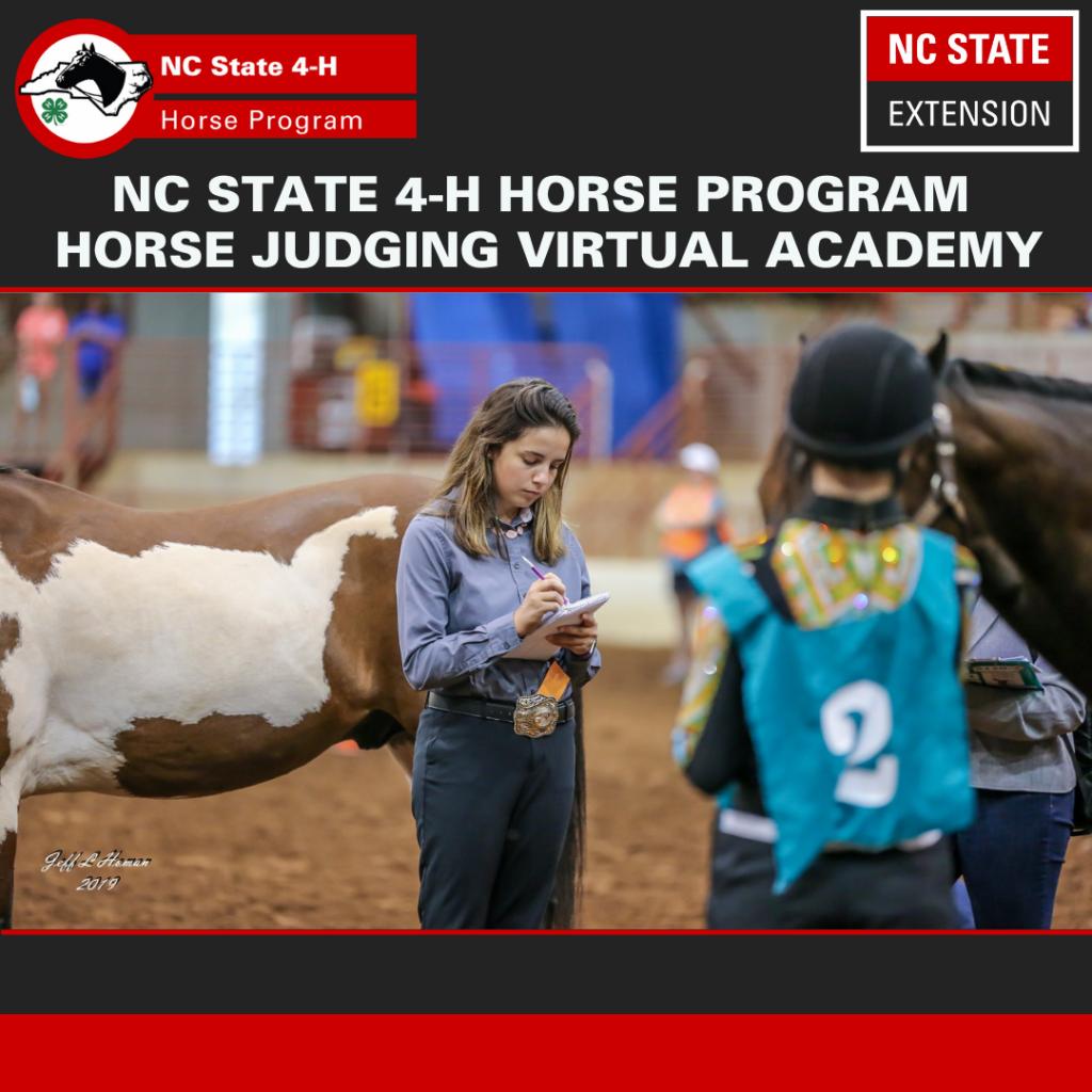 Horse Judging Academy